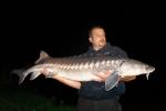 pêche esturgeon transmontanus evrieu