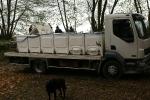Camion de transport des poissons