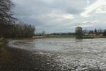 Mise à sec de l'étang de Saint André le Gaz