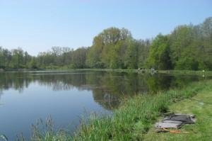 Etang de pêche à carpe et camping
